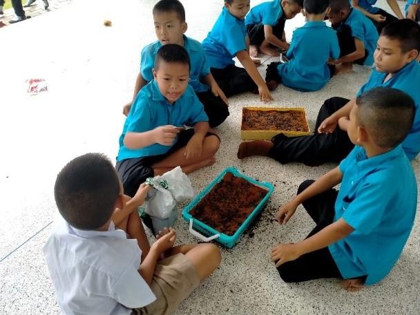 """เรียนรู้โลกต้นอ่อนของทานตะวันของโรงเรียนวัดสุขไพรวัน """"ปลูกได้ ขายเป็น เน้นพอเพียง"""""""